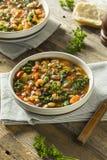 Varma organiska hemlagade 10 Bean Soup Arkivbild