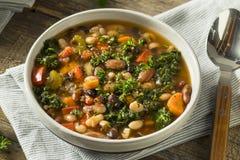 Varma organiska hemlagade 10 Bean Soup Royaltyfri Foto