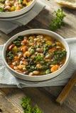 Varma organiska hemlagade 10 Bean Soup Fotografering för Bildbyråer