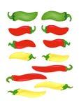 varma peppar Fotografering för Bildbyråer