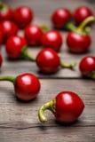 varma peppar för Cherry Royaltyfri Fotografi