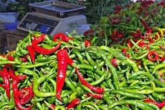 varma peppar för chili Royaltyfri Foto