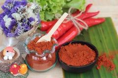 Varma peppar för kryddigt paprikapulver och ny chili Royaltyfri Foto