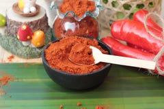 Varma peppar för kryddigt paprikapulver och ny chili Royaltyfria Bilder