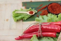 Varma peppar för kryddigt paprikapulver och ny chili Royaltyfri Bild