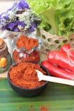 Varma peppar för kryddigt paprikapulver och ny chili Royaltyfria Foton
