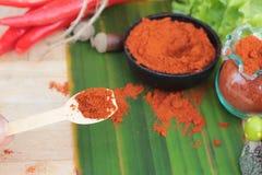 Varma peppar för kryddigt paprikapulver och ny chili Royaltyfri Fotografi