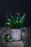 Varma peppar i månskenet Royaltyfri Fotografi