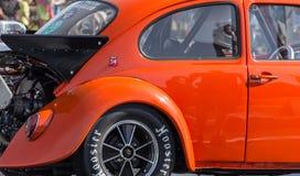 Varma Rod Beetle Fotografering för Bildbyråer