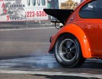 Varma Rod Beetle Heating det upp Royaltyfri Fotografi