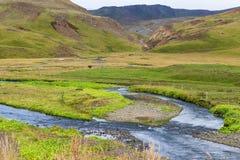Varma rzeka w Hveragerdi Gorącej wiosny Rzecznym śladzie Obrazy Royalty Free