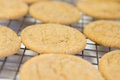 Varma Sugar Cookies Arkivfoto