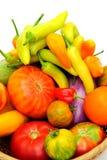 varma tomater för chilis Royaltyfri Foto