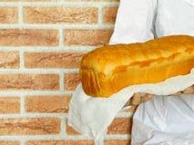 Varmt bröd i händerna för bagare` s Royaltyfri Foto