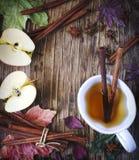 Varmt drinkäpplete, sider, stansmaskin med den kanelbruna pinnen, stjärnaanis och kryddnejlika S?songsbetonad funderad drink arkivbild