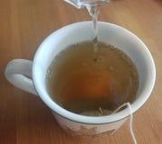 Varmt grönt te som bryggas i en vit kopp arkivbild