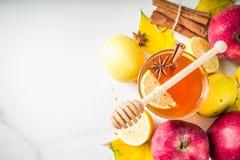Varmt kryddigt te för höstvinter royaltyfri fotografi