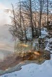 Varmt och kallt i Yellowstone Arkivfoton
