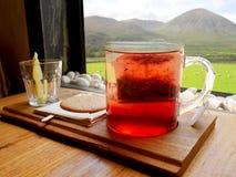 Varmt te för jordgubbemango på trämagasinet royaltyfri foto