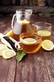 Varmt te i en genomskinlig kopp Te med citronfrukter Värmedri Royaltyfria Foton