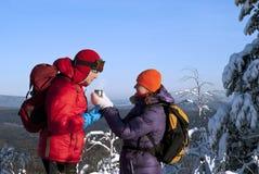 Varmt te i förkylningen Fotografering för Bildbyråer