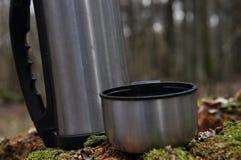 Varmt te i termoset för en gå i träna Royaltyfria Foton