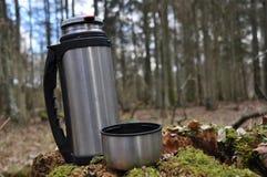 Varmt te i termoset för en gå i träna Royaltyfria Bilder