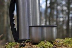 Varmt te i termoset för en gå i träna Royaltyfri Fotografi