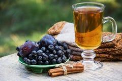 Varmt te med kanel, plommonet och svartchokeberry Royaltyfri Foto