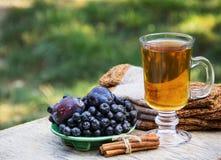 Varmt te med kanel, plommonet och svartchokeberry Fotografering för Bildbyråer
