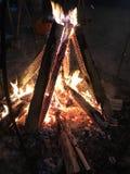 Varmt trä för lägerbrandflams Arkivfoton