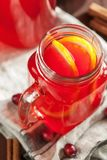 Varmt tranbärte med den orange kanelbruna värmedrinken Royaltyfri Bild