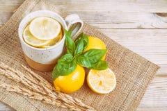 Varmvatten med citronen och basilika arkivfoto