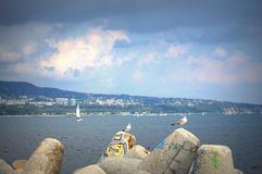 Varna bay sailing boats race Stock Images