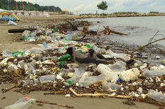 Varna beach pollution after flood Stock Photography