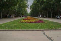 Varna, Bulgaria-15 08 2017 - Le parc de jardin ou de Primorski de mer Image stock
