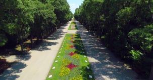 Varna, Bulgaria Opinión aérea del abejón del parque del jardín del mar de la ciudad con las flores y los callejones metrajes