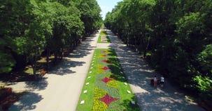 Varna Bulgaria, vista aérea del parque del jardín del mar con las flores coloridas y la gente feliz almacen de video