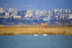 Varna, Bulgarien stockfotografie
