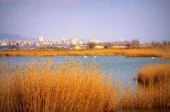 Varna, Bulgarien lizenzfreies stockbild