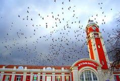 Varna city railway station doves. Varna city railway station exterior and dozens flying doves,Bulgaria Stock Photos