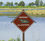 varna för alligatorer Arkivfoto