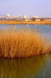 Varna lake,Bulgaria stock photography