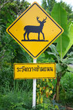 Varningshjortkorsning tecken Arkivfoton