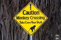 Varningstecken - apor som korsar vägen och tar omsorg av ditt material Royaltyfria Foton