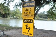 Varningstecken för aggressiv gäss och ormar Royaltyfri Foto