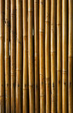 Varnished bamboo background Stock Photo