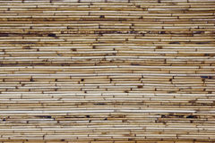 Varnished bamboo background Royalty Free Stock Photo