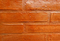 Varnished brick wall Stock Photography