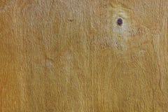 Varnished plywood Royalty Free Stock Photo